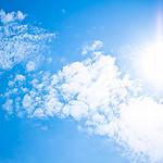 気儘日記:38.2℃で最高気温を更新しサルサバーガーを食べて朝顔キレイで猫夏バテ