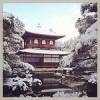 雪が降った!ついに雪の「銀閣寺」を撮影するチャンスが到来したぞ!雪景色いいわ〜