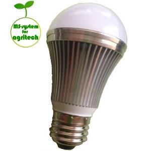 赤いLED電球で観葉植物を元気に育てよう!これで日照不足もヘッチャラさ