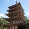 京都観光5-1:京都最古の五重塔がある「醍醐寺」へ行ってきた!ここは紅葉スポットでとても綺麗なのです