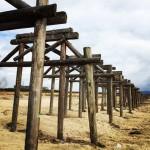 時代劇の撮影で有名な京都にある「流れ橋」に行ってきた!橋桁は流されて木製の橋脚だけが残されているのだよ