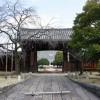 京都観光2015-3:京都八本山御朱印巡りで「妙覚寺」を訪れる!工事中で出鼻をくじかれるも運がいい?