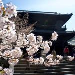 京都観光2015-7:満開の桜が咲く「南禅寺」に行ってきた!桜の名所だけあって素晴らしかったぞ