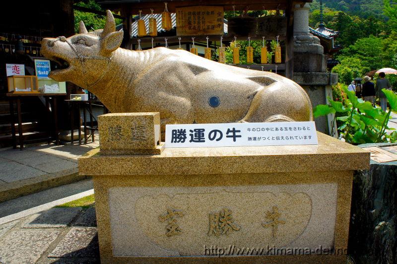 三室戸寺(2015/06/10)