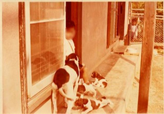 庭で犬と遊ぶ幼き頃