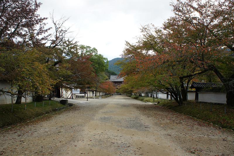 醍醐寺(下醍醐) 参道