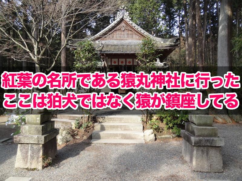 紅葉の名所である猿丸神社に行った
