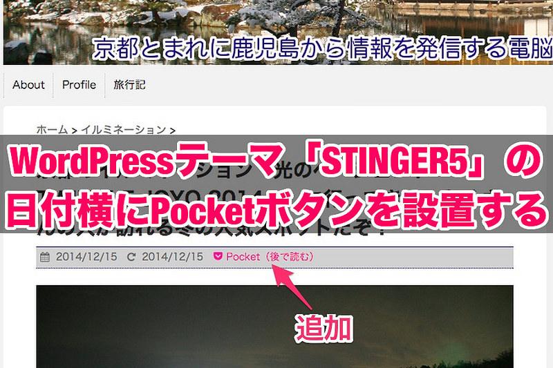 STINGER5の日付横にPocketボタンを設置(title)