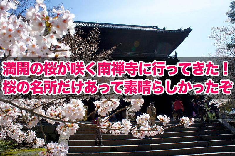 満開の桜が咲く南禅寺に行ってきた!