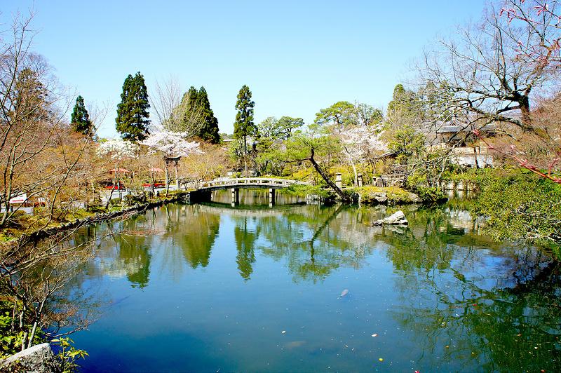 放生池/永観堂 禅林寺(Eikando, Zenrin-ji Temple / Kyoto City) 2015/04/02