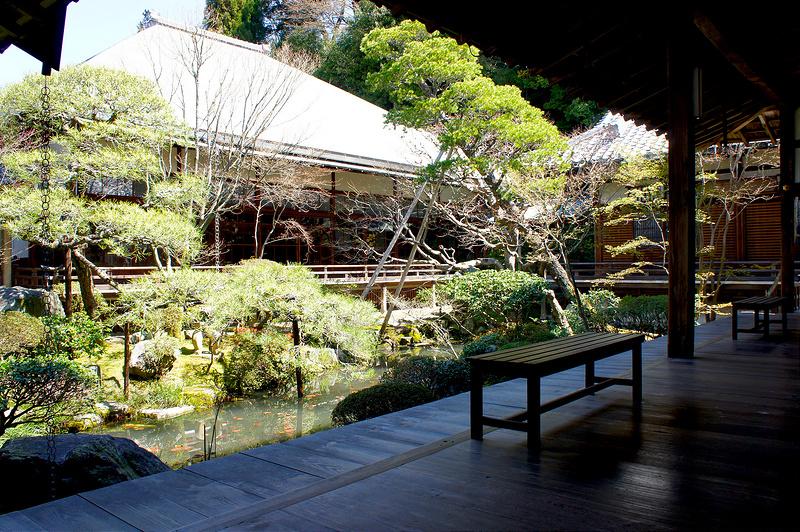 釈迦堂から見る庭と古方丈/永観堂 禅林寺(Eikando, Zenrin-ji Temple / Kyoto City) 2015/04/02