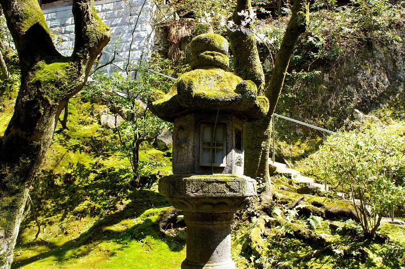多宝塔へ向かう途中にある石灯籠/永観堂 禅林寺(Eikando, Zenrin-ji Temple / Kyoto City) 2015/04/02