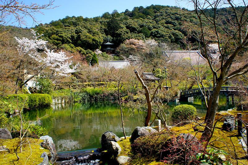 放生池から見る多宝塔/永観堂 禅林寺(Eikando, Zenrin-ji Temple / Kyoto City) 2015/04/02