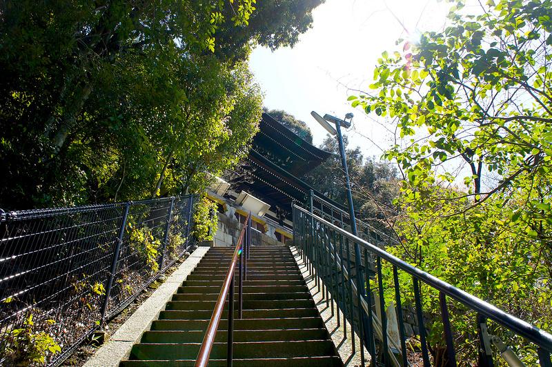 多宝塔へ向かう階段/永観堂 禅林寺(Eikando, Zenrin-ji Temple / Kyoto City) 2015/04/02
