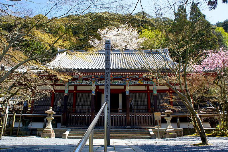 阿弥陀堂(本堂)/永観堂 禅林寺(Eikando, Zenrin-ji Temple / Kyoto City) 2015/04/02