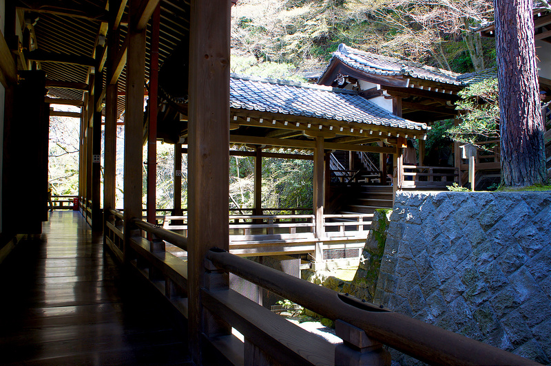 御影堂の裏/永観堂 禅林寺(Eikando, Zenrin-ji Temple / Kyoto City) 2015/04/02