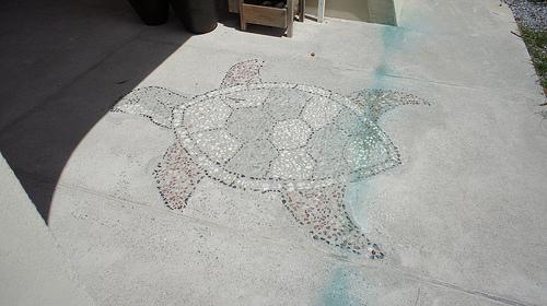 床に亀のデザイン
